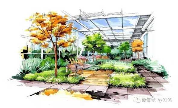 建筑手绘植物树