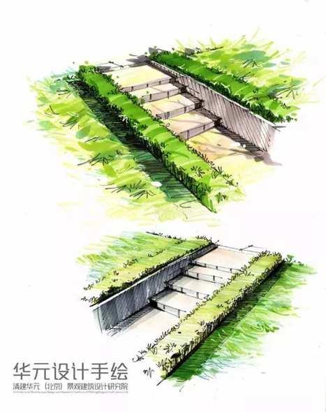 绿篱马克笔手绘